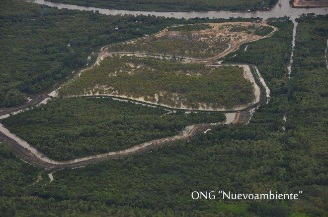 Isla-PAULINO-2013-DEFORESTACIÓN